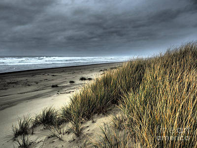 Photograph - Windswept by Parrish Todd