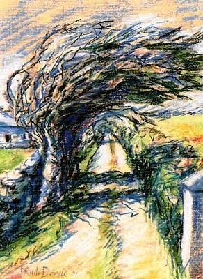 Archaeologists Painting - Windswept Tree On Aran Island Galway Ireland  by Trudi Doyle