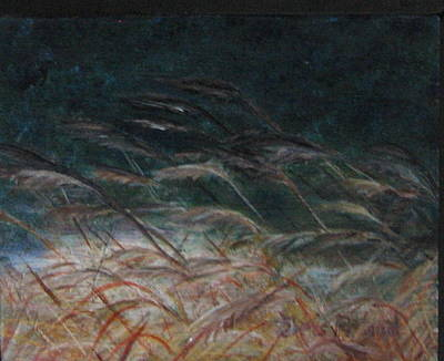 Windblown Painting - Windward by Doris Roland