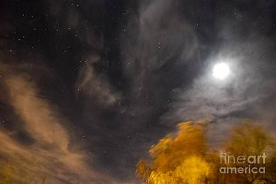 Art Print featuring the photograph Windy Night by Angela J Wright