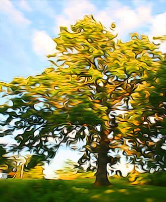 Digital Art - Windy Oak by Geoff Strehlow