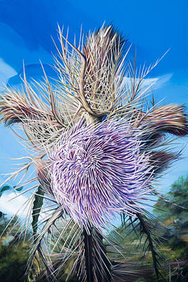 Painting - Windy Thistle by Donna Page