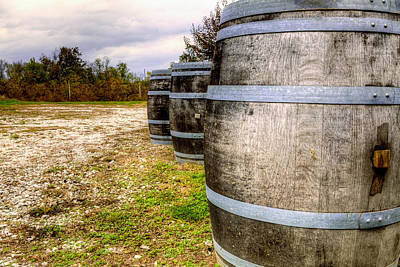 Wine Barrel Photograph - Wine Barrels by Alexey Stiop