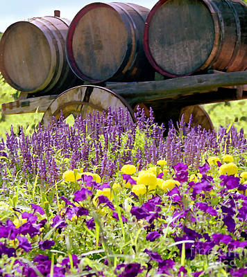 Wine Barrels At V. Sattui Napa Valley Art Print by Michelle Wiarda