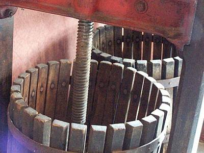 Winepress Photograph - Wine Barrels by Darlene Dranda