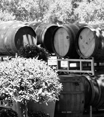Vino Photograph - Wine Barrels by Mickey Marino