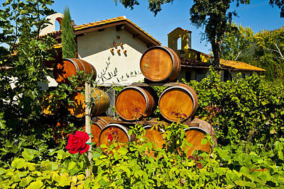 Wine Barrel Photograph - Wine Barrels by Wayne Kondoff
