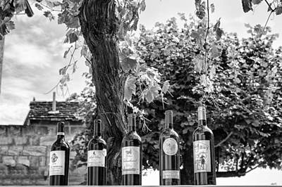 Wine Bottle Images Photograph - Wine Bottle Row In Mono by Georgia Fowler
