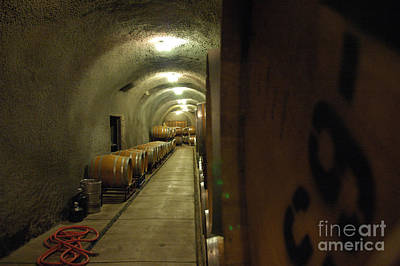 Wine Cellar Photograph - Wine Cellar 2 by Micah May