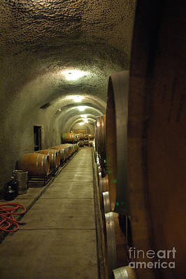 Wine Cellar Photograph - Wine Cellar 3 by Micah May