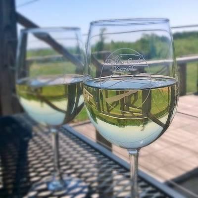 Vineyard Photograph - Chardonnay From Dobbins Creek Vineyards by Eric Martin