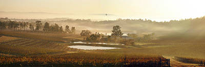 Wine Country Art Print by Rick Drent