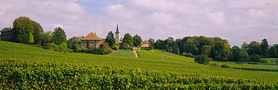 Wine Scene Photograph - Wine Country With Buildings by Panoramic Images