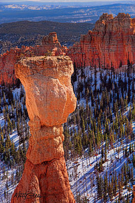 Photograph - Wine Glass Toast In Bryce Canyon by Marti Green