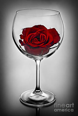 Food And Flowers Still Life - Wine glass with rose by Elena Elisseeva