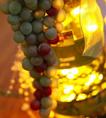 Tasting Photograph - Wine Grapes Bokeh by Dan Sproul