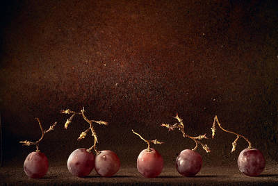 Tasting Photograph - Dancing Wine Grapes by Dirk Ercken