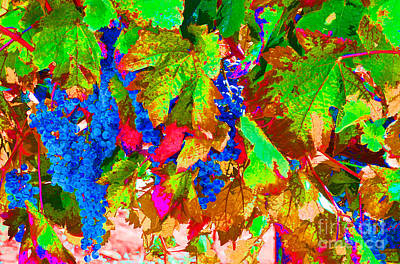 Art Print featuring the photograph Wine In Time by David Lawson