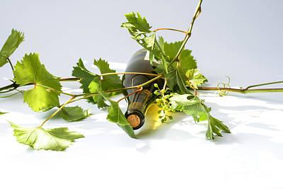 Wine Art Print by Patricia Hofmeester