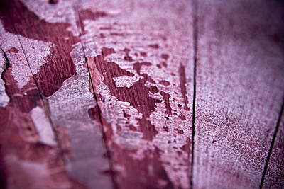 Royalty-Free and Rights-Managed Images - Wine Red by Frank Tschakert