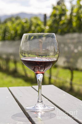 Hawkes Bay Photograph - Wineglass With Red Wine In Vineyard by Patricia Hofmeester