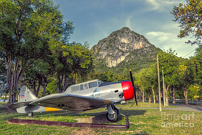 Wing 5 Thailand Art Print by Adrian Evans