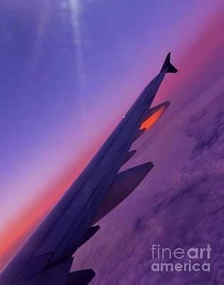 Photograph - Wing Reflects Sunset by Susan Garren