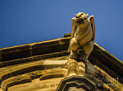 Photograph - Winged Gargoyle by Deborah Smolinske