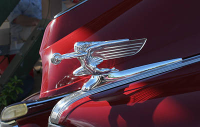 Photograph - Winged Lady Hood Ornament by John Orsbun