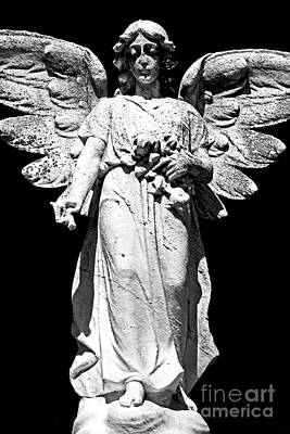Photograph - Wings Of An Angel by John Rizzuto