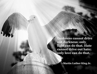 Photograph - Wings Of Freedom Illuminated With Martin Luther King Jr. Quote by Aurelio Zucco