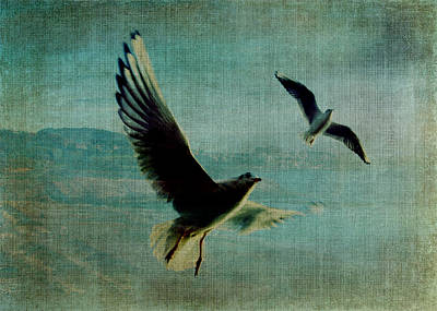 Wings Over The World Art Print by Sarah Vernon