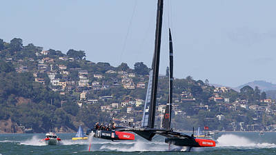 Sausalito Photograph - Winner Oracle by Steven Lapkin