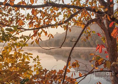 Winona Photograph Sugarloaf Through Leaves Art Print