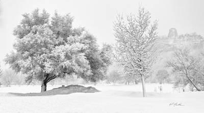 Photograph - Winona Snowstorm by Al  Mueller