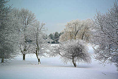 Photograph - Winter 2013 by Dragan Kudjerski