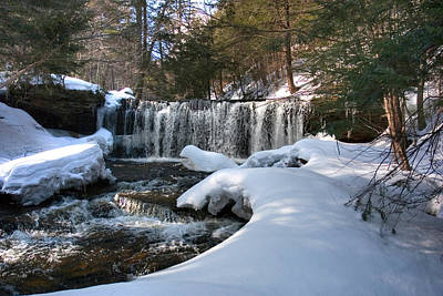 Photograph - Winter Afternoon At Oneida Falls by Gene Walls
