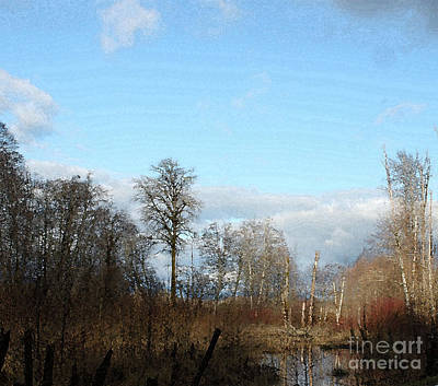 Photograph - Winter Afternoon At The Wetlands by Terri Thompson