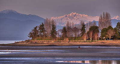 Photograph - Winter Afternoon by Randy Hall