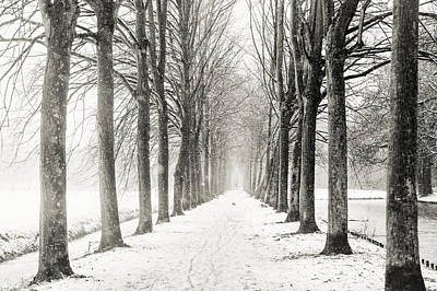 Photograph - Winter Alley In Rhoon. Holland. Black N White by Jenny Rainbow
