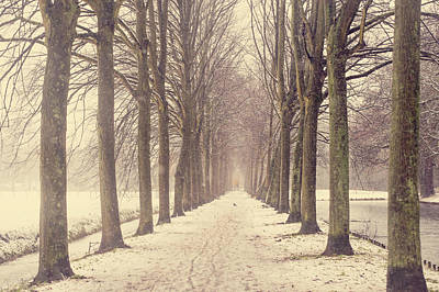 Photograph - Winter Alley In Rhoon. Holland by Jenny Rainbow