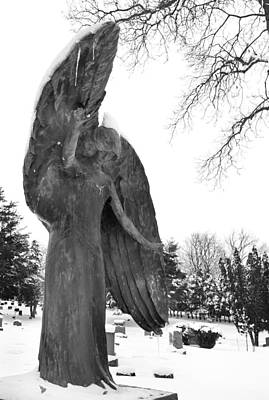 Photograph - Winter Angel by Jamieson Brown