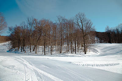 Photograph - Winter At Mccauley Mountain V by David Patterson