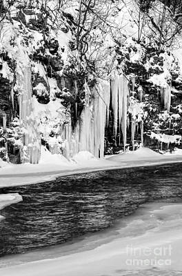 Winter At The Creek Monochrome Art Print by Darleen Stry