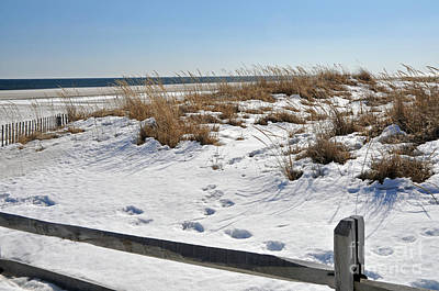 Photograph - Winter At The Jersey Shore by NightVisions