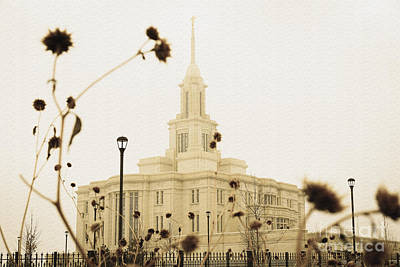 Light Photograph - Winter At The Payson Temple by Gloria Pasko