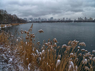Photograph - Winter At The Reservoir by Cornelis Verwaal