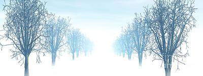 Winter Avenue Art Print