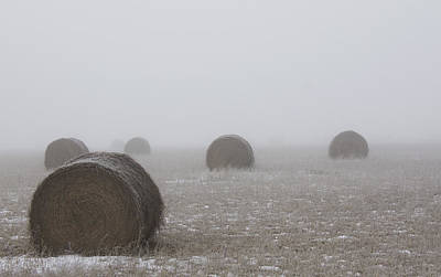 Photograph - Winter Bales  by Sarah Boyd