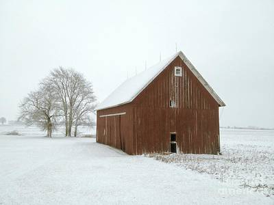Photograph - Winter Barn by Photography by Tiwago